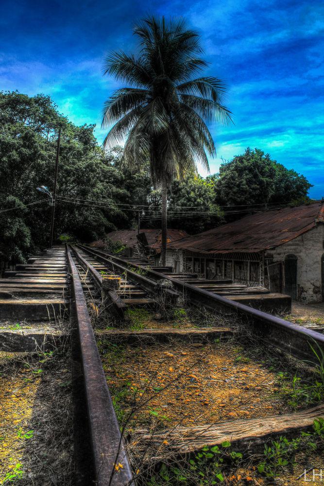 Vías del tren Abandonadas (Ambalema, Tolima, Colombia) by LeoAndino