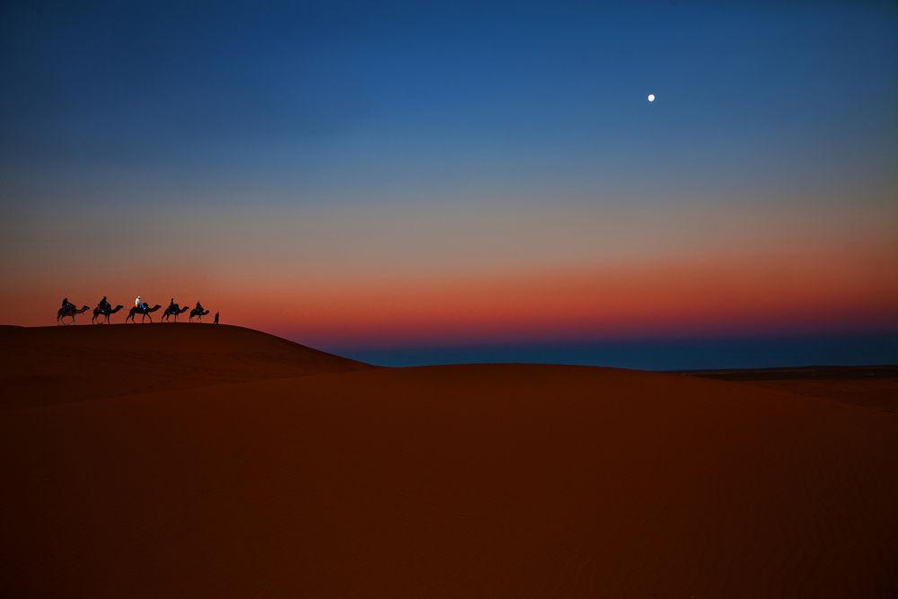 before dawn by ck khui