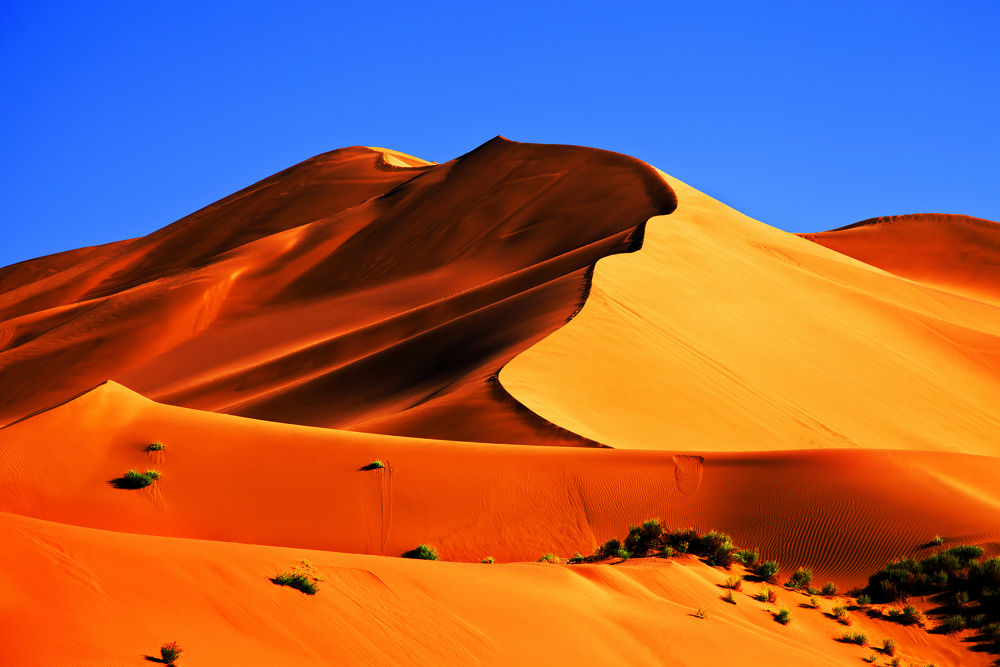 sand dune by ck khui