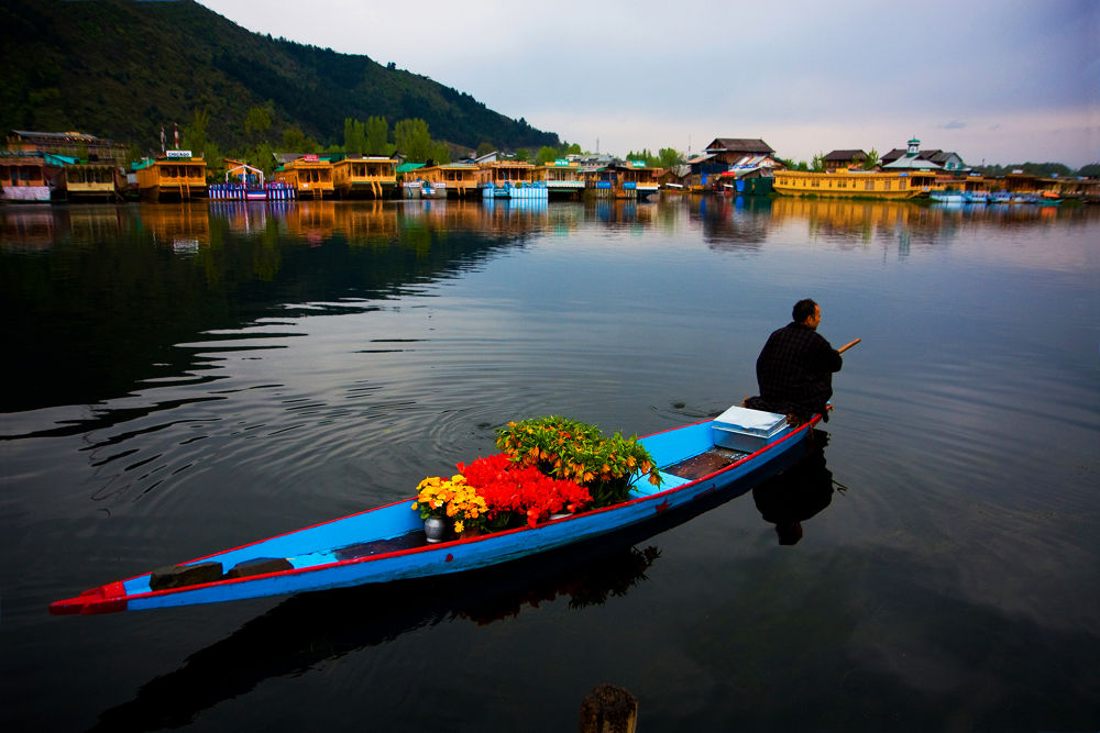 flower man by ck khui