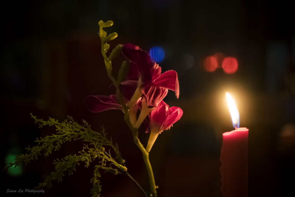 Candlelight roses ... by simoncklee