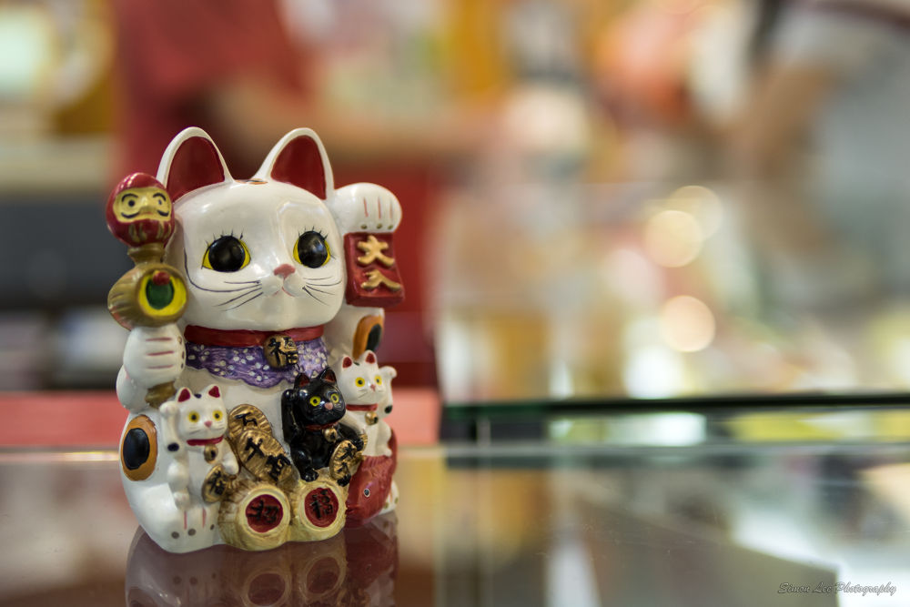 The cat of fortune by simoncklee