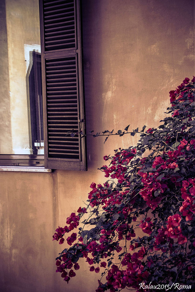 Primavera by Kalau