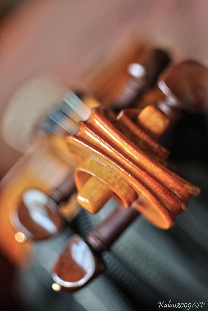 Violin by Kalau