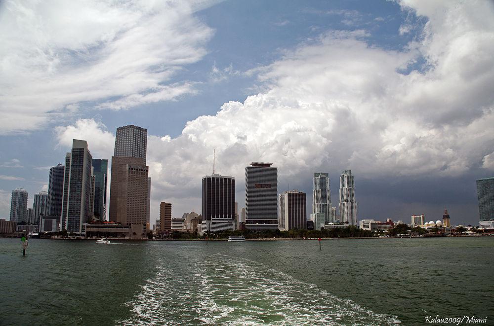 Miami by Kalau