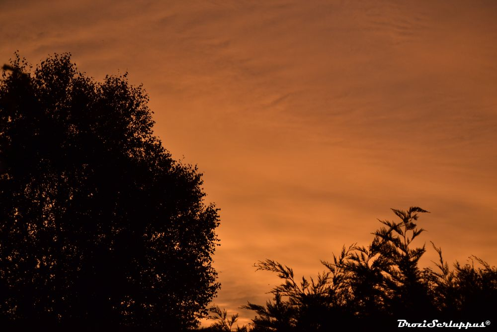 Golden clouds by Brozi Serluppus