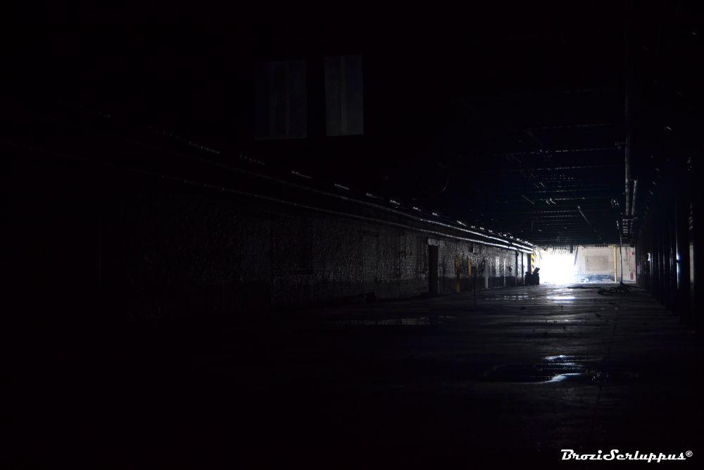 Fade to darkness by Brozi Serluppus