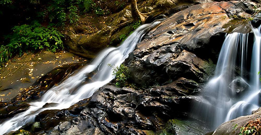 Photo in Nature #rocks #water #falls #flow #fauna