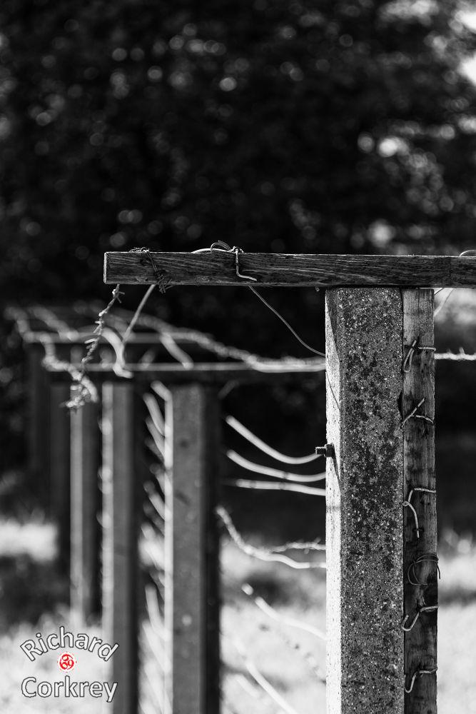 Sopron Border (3 of 3).jpg by Richard Corkrey