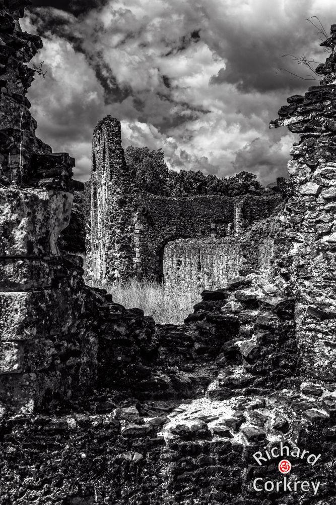 Waverley Abbey by Richard Corkrey
