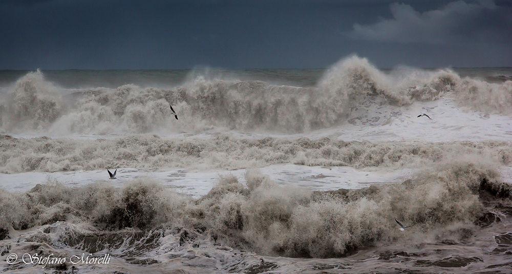 1245-Il mare dal mio punto di vista...... by Stefano