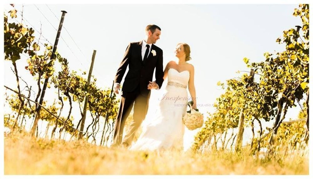 Into the Vines by Inexpensive Wedding Photography