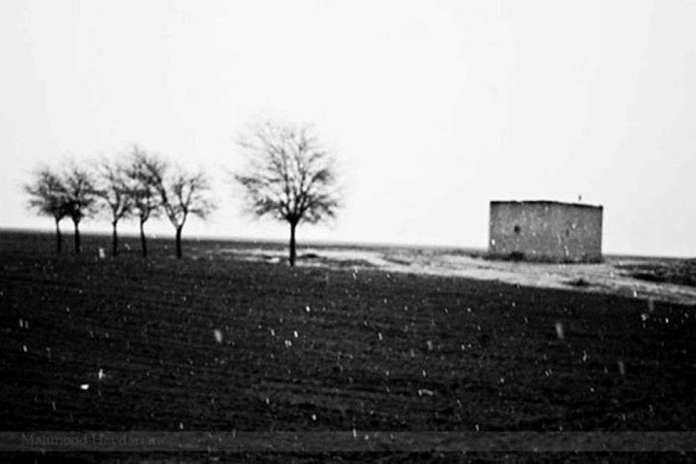 Snow  began by mahmoudheydarian