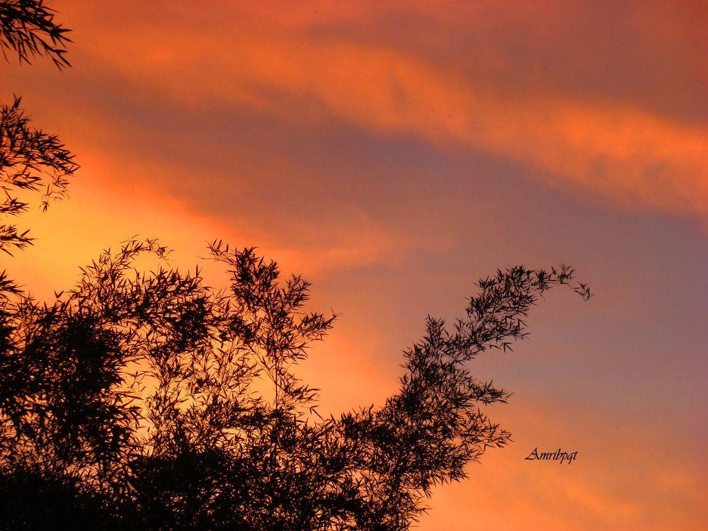Amanhecer / Sunrise by letypqt