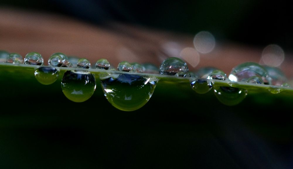 Droplet Group by Angie Rumble
