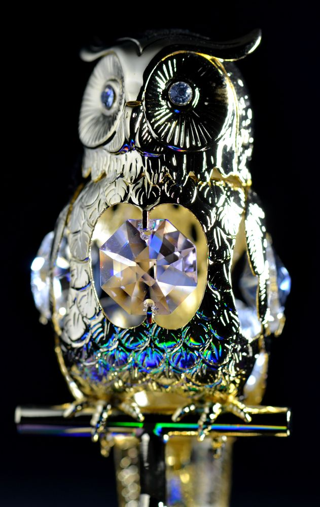 Crystal Owl (0002) by Angie Rumble