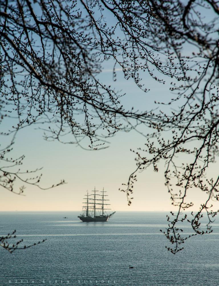skib by Ruben Blaedel