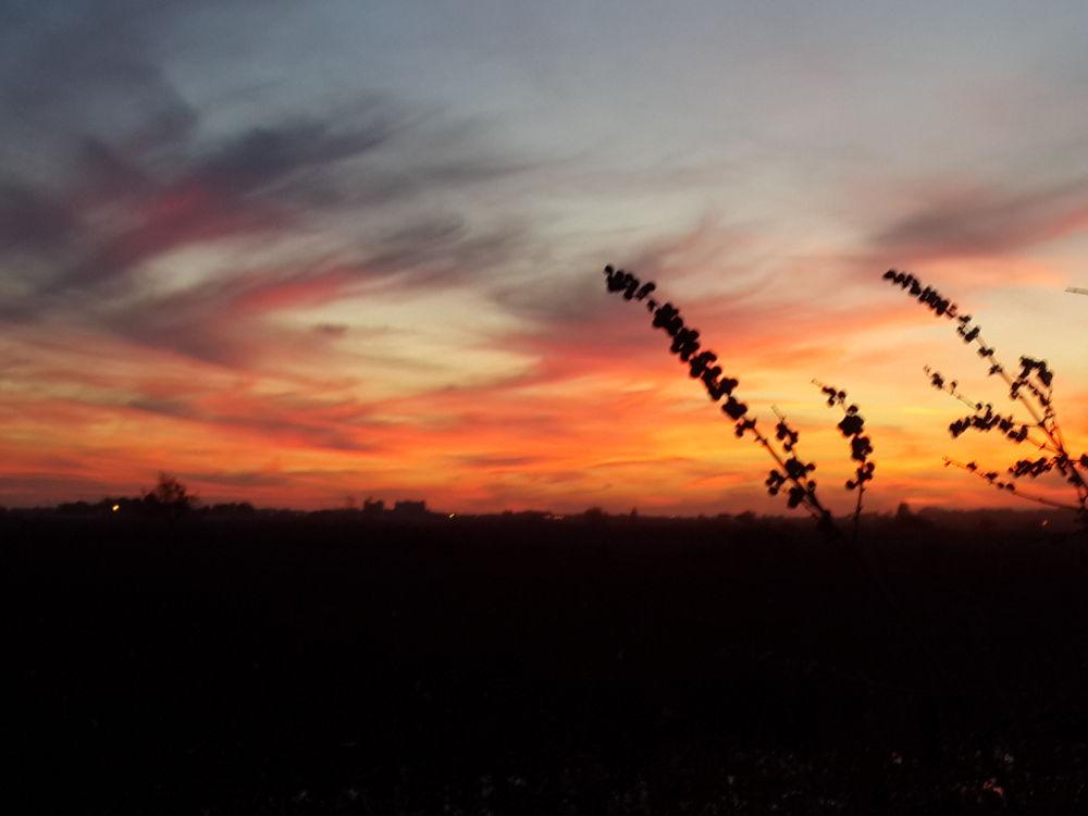 gün batımı by bekirerguner