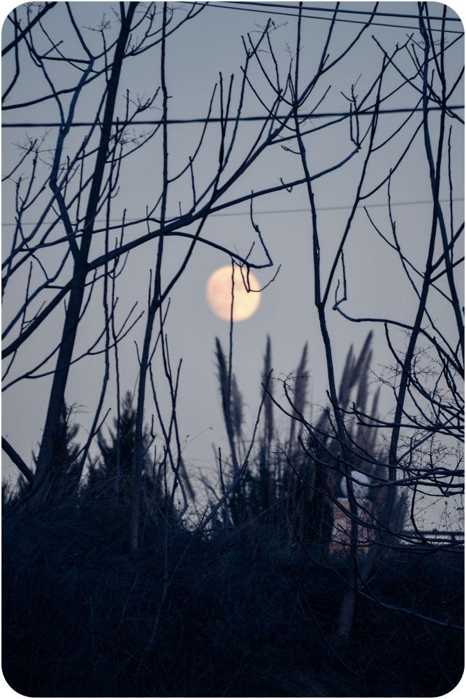 Full moon by lambriana