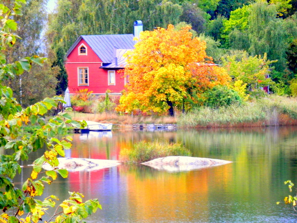 Swedish natur by graciela.medina.3150