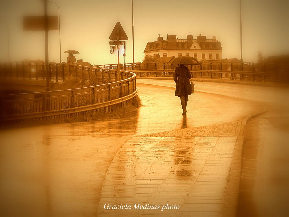 Raindrops by graciela.medina.3150