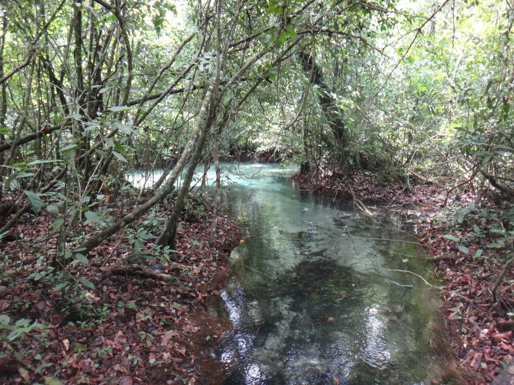 Blue river by lucy yuriko pelliser