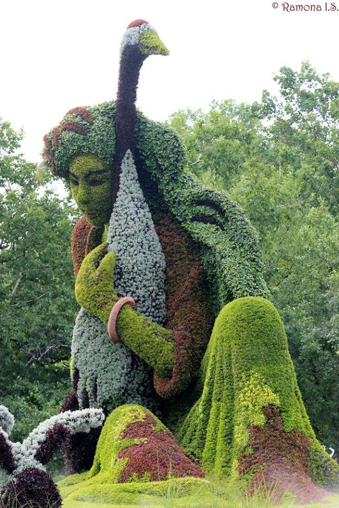 expo jardin botanique by Ramona IS