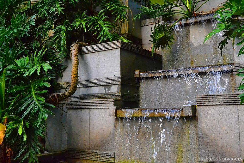Parque da Residência ( Belém - Pará - Brazil ) by MarcosRodrigues