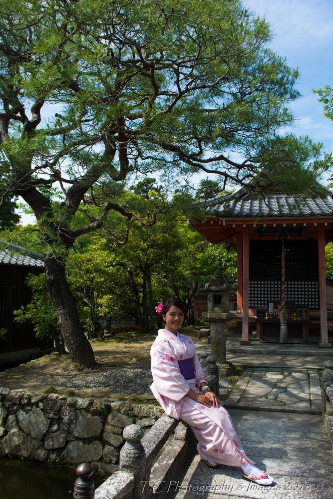 Japan beauty by Troy Carroll