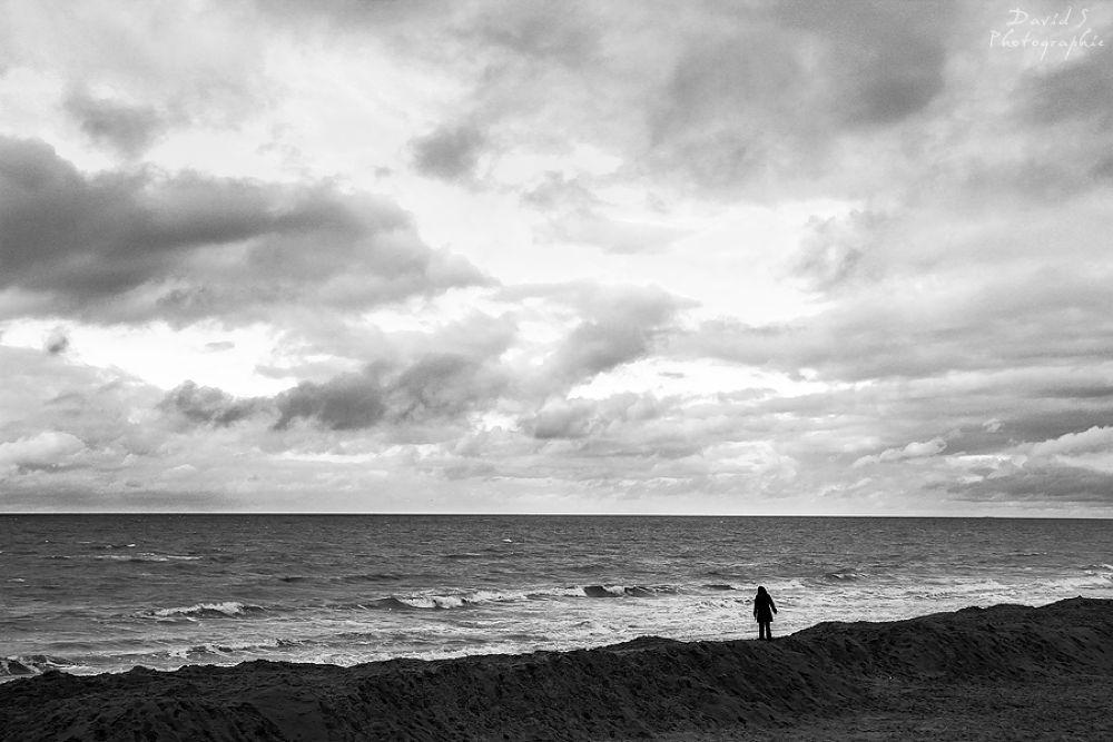Facing the world by David Salobir
