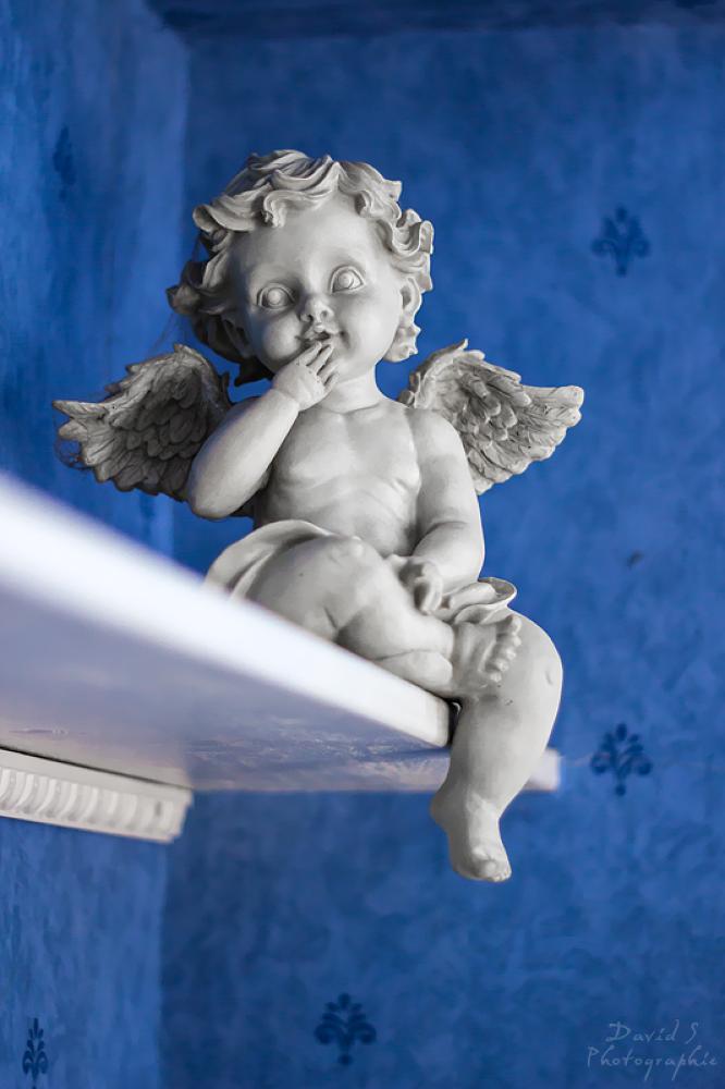Little angel by David Salobir