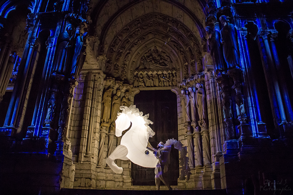 Magic horse by David Salobir