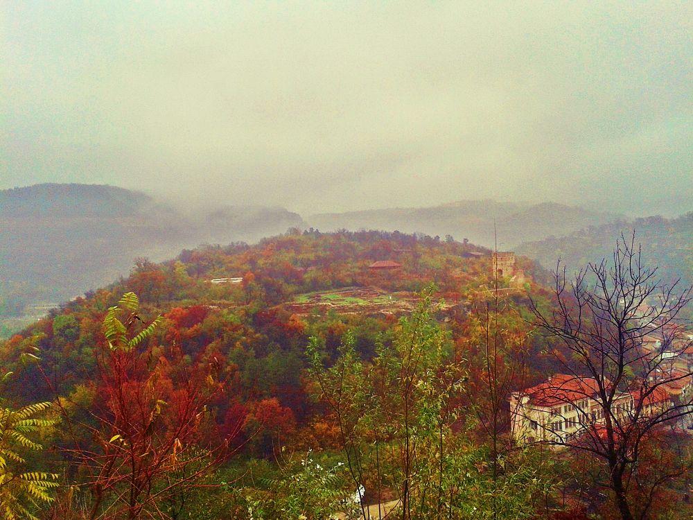 fog by bogdana.lazarova