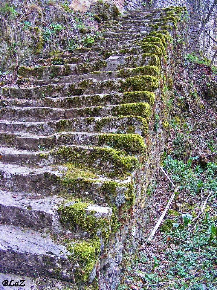 old staircase by bogdana.lazarova