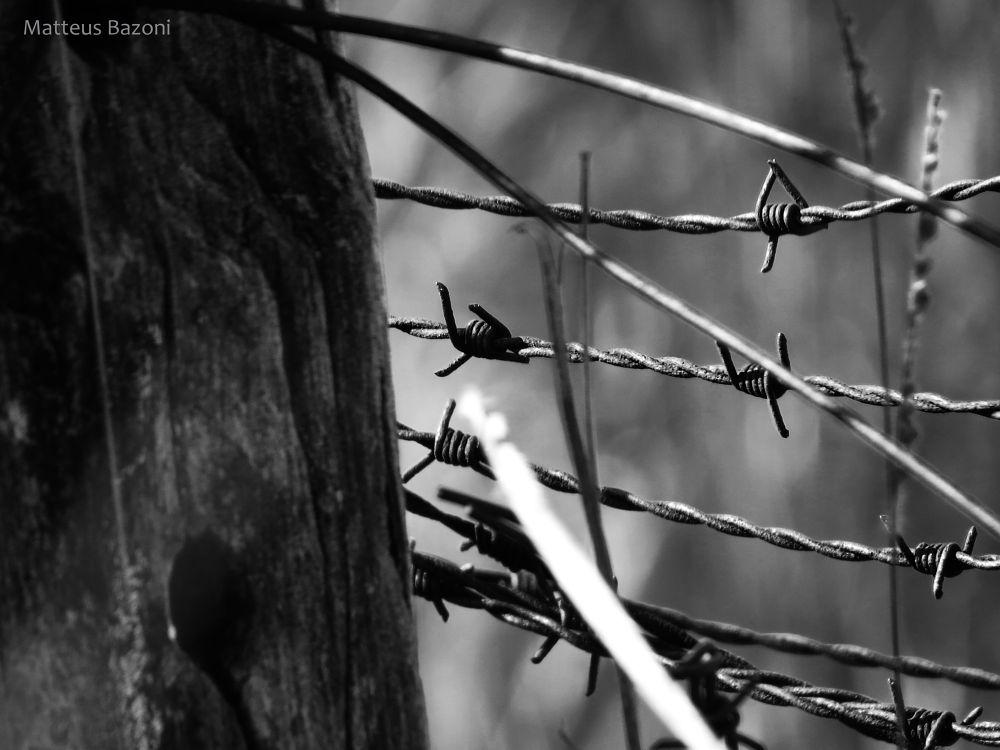 War by MatteusBazoni