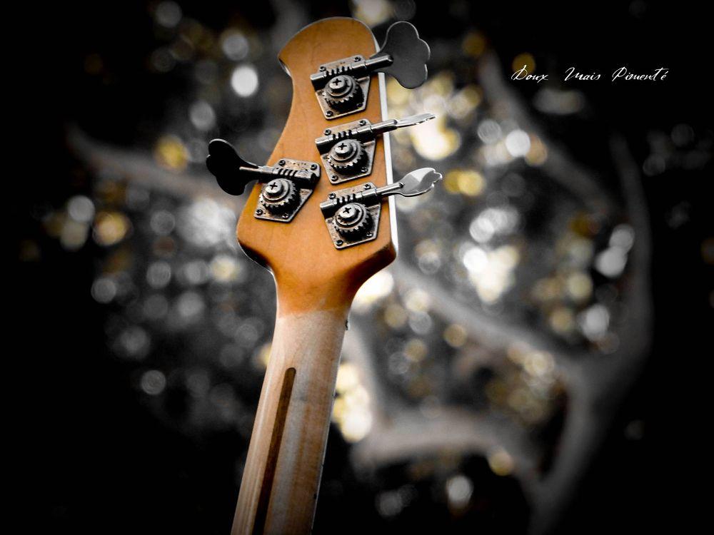 DMP le chasseur d'images      ......................page   FACEBOOK by DMP le chasseur d'images-Photography
