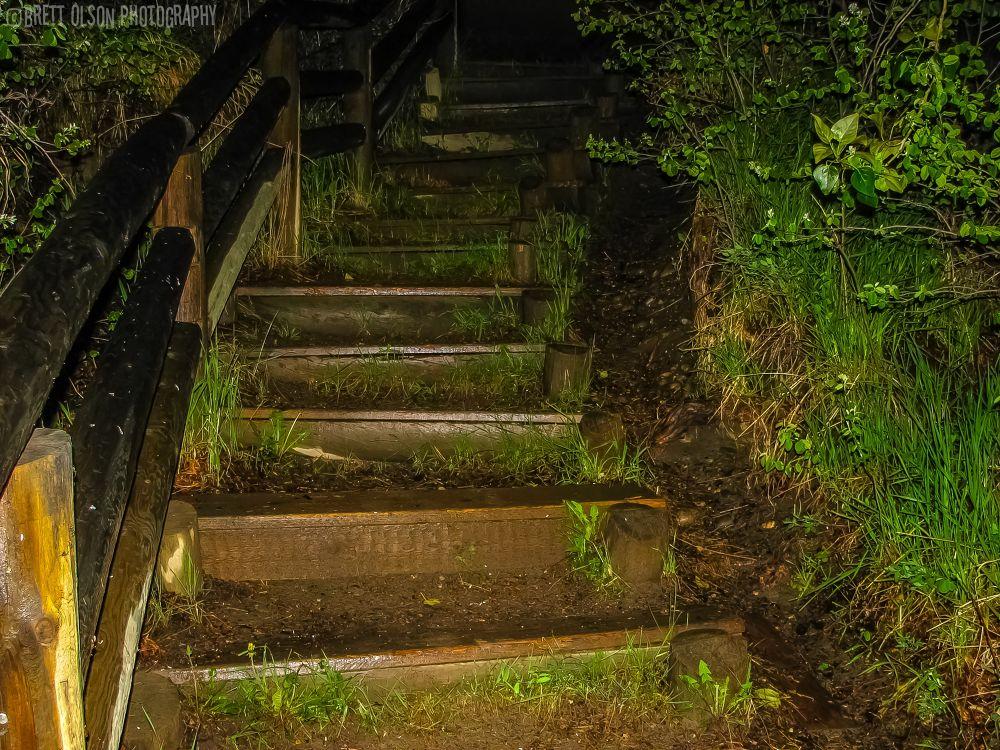 Photo in Nature #stairs #nature #night