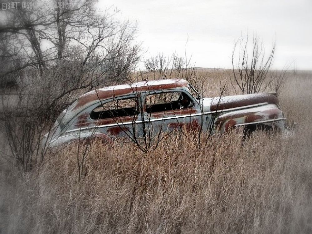 Photo in Nature #car in barn #old cars