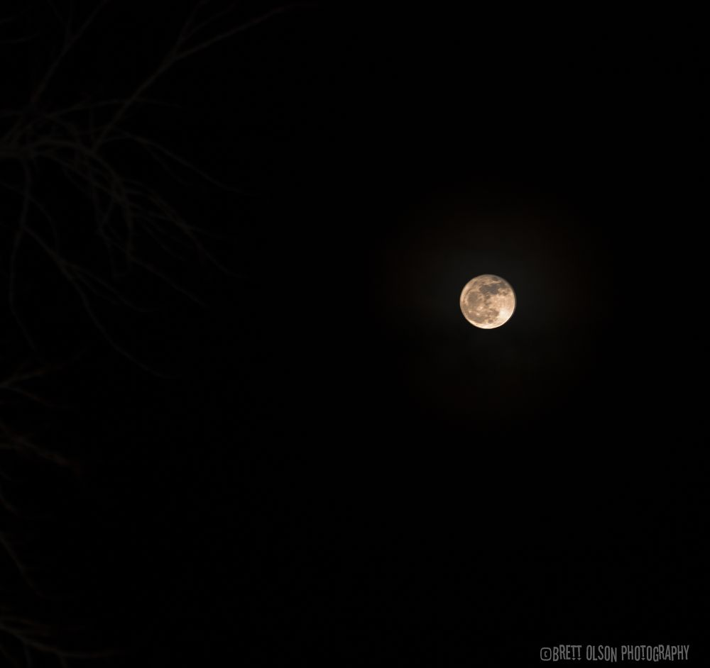 Photo in Astrophotography #moon #luna #full moon