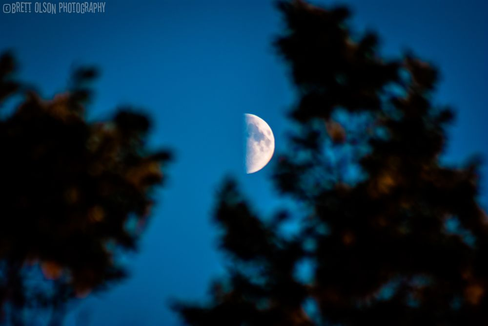 Photo in Astrophotography #moon #luna