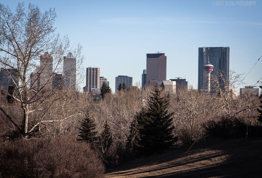 Calgary, Canada by Brett Olson