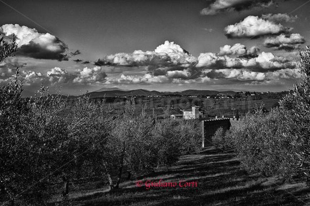 Colli Fiorentini 2013-0331ao BN.jpg by Giuliano_Corti
