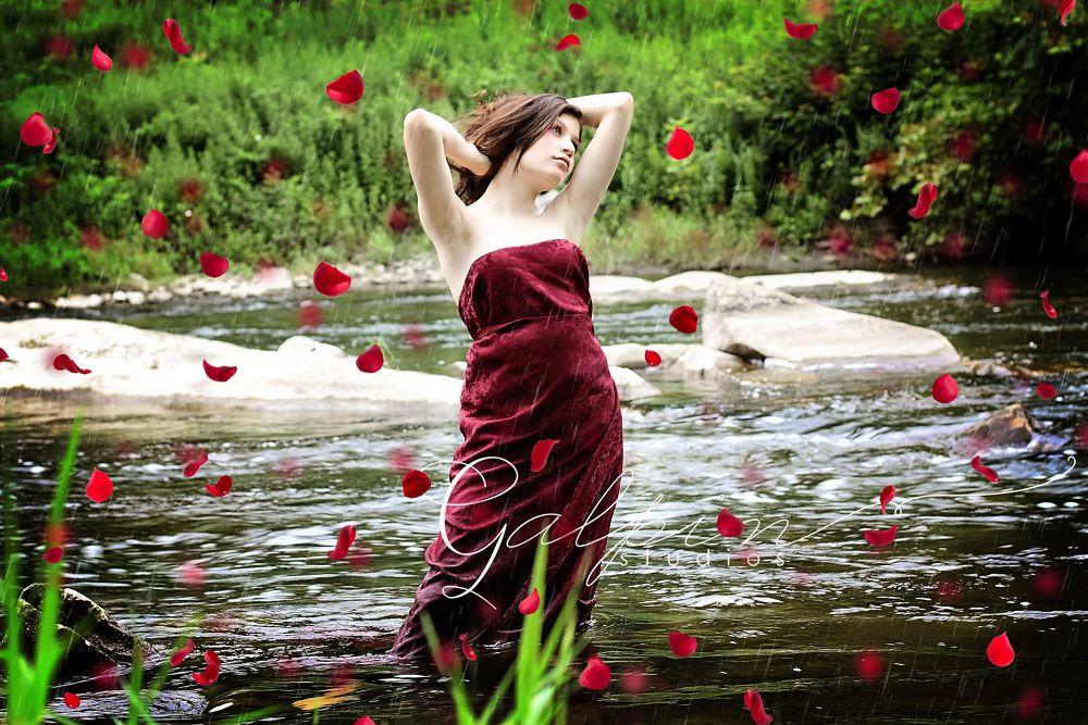 Rose Beauty by Galpin Studios