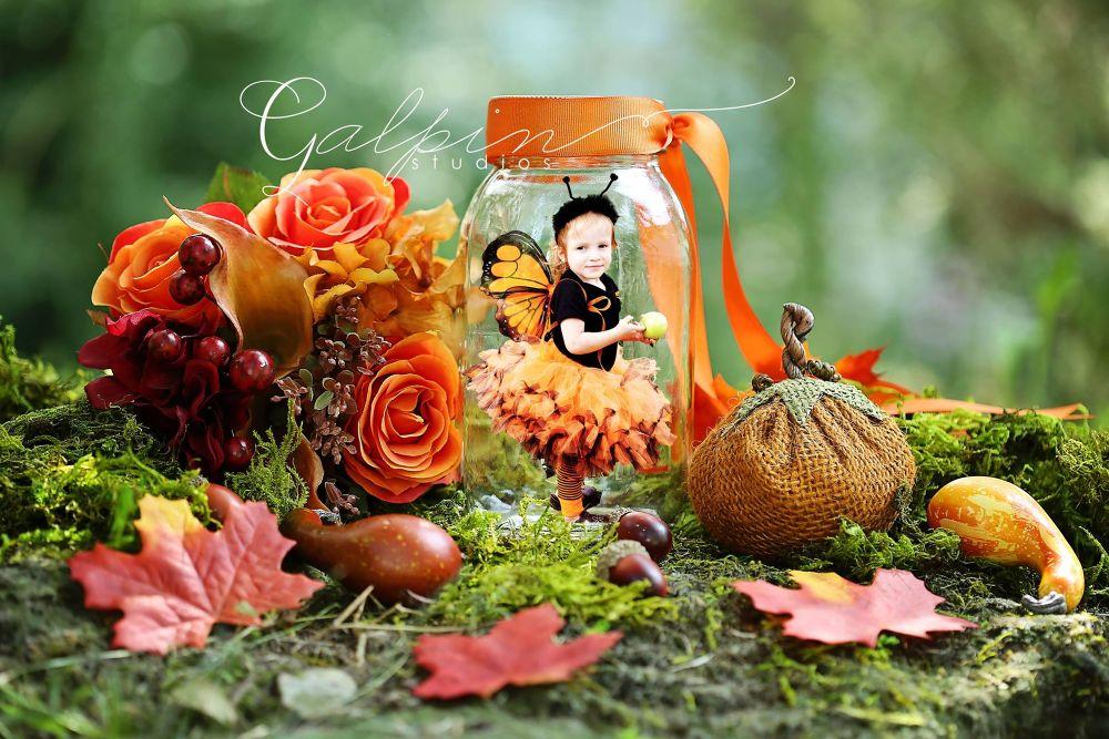 Little Harvest Fairy by Galpin Studios