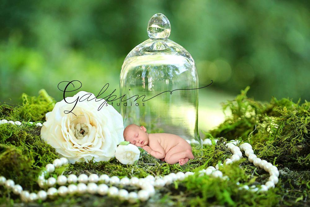 Sweet Garden Newborn  by Galpin Studios
