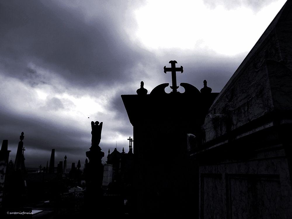 Intemporal memories... by Antonio F. Maia