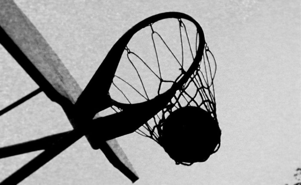 Basket  by Melissa Duran