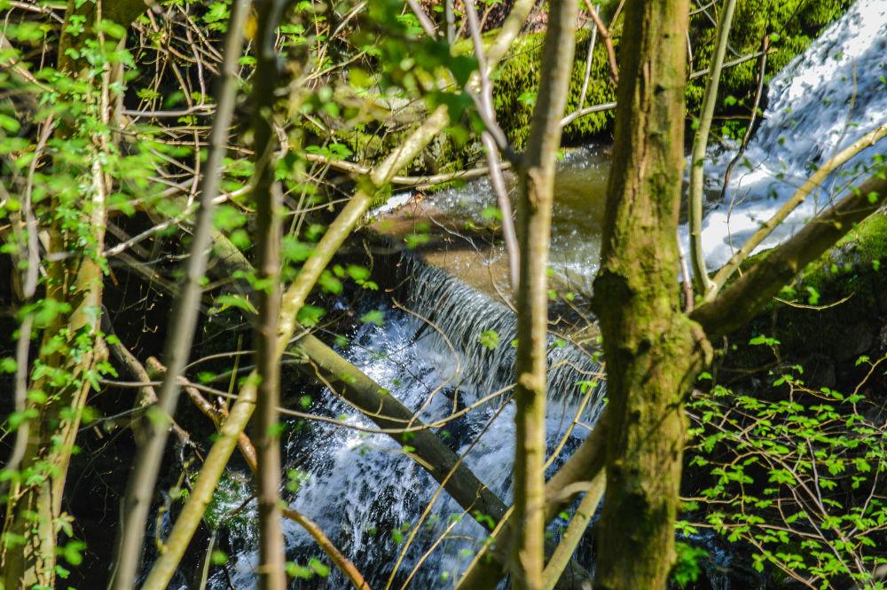 water fall by Delwyn Edwards