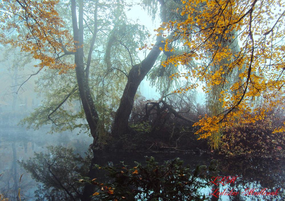 Autumn by LLadislav Madlenak