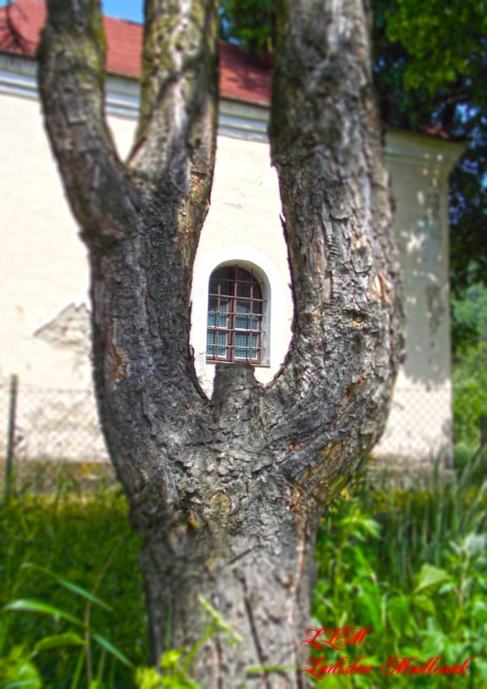 Window in... by LLadislav Madlenak